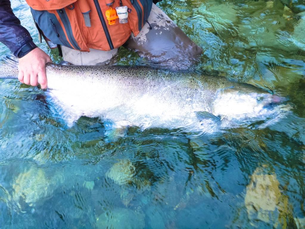 river fishing for Salmon Vancouver Island